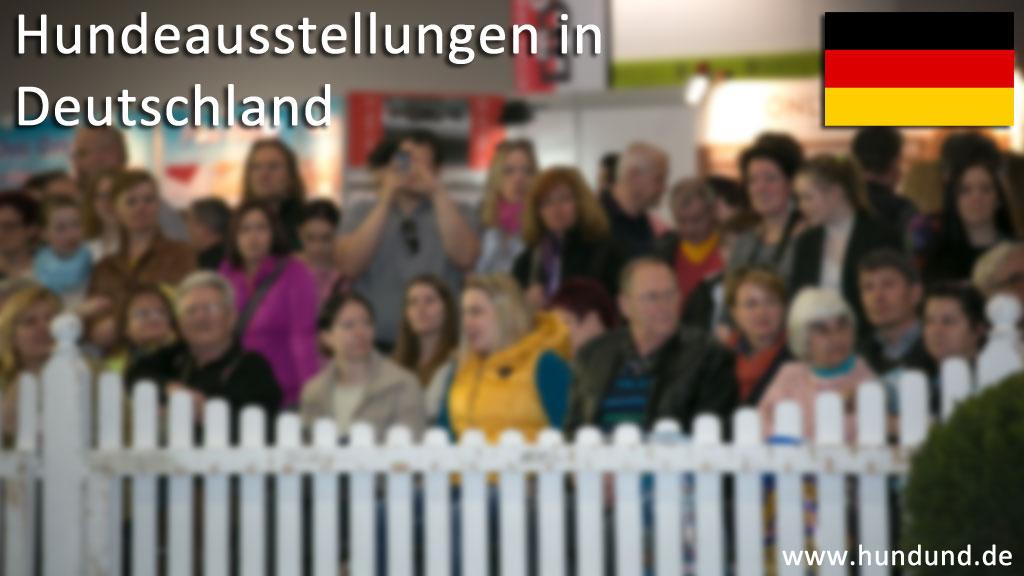 Internationale Hundeausstellungen in Deutschland