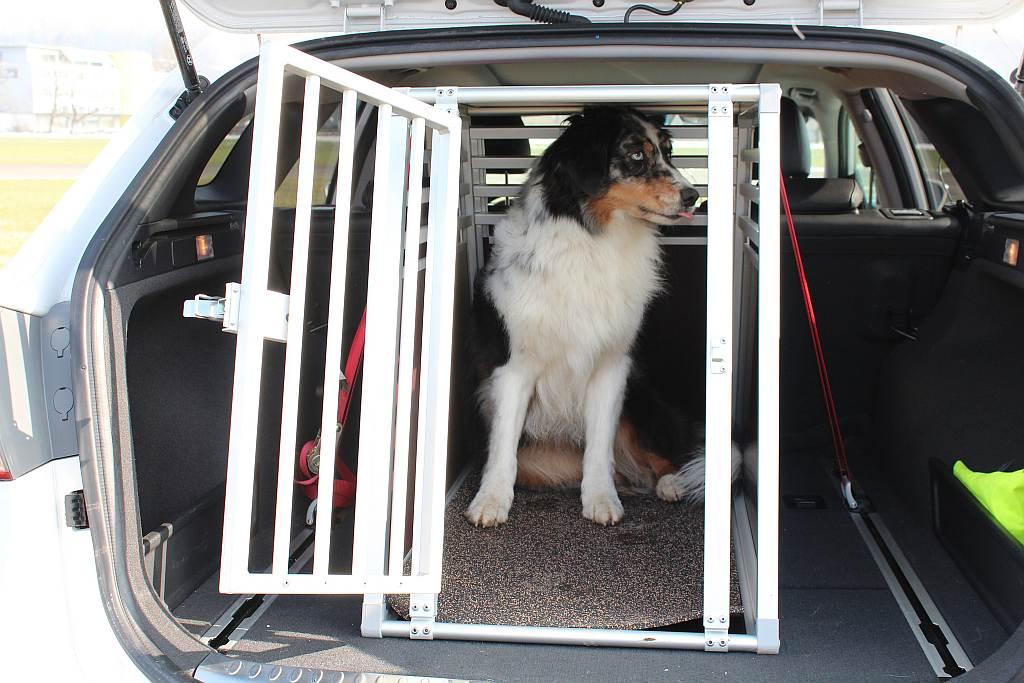 Welche Hundebox fürs Auto? Hundeboxen Test - Ratgeber - hundund.de