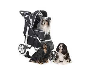 Hundebuggy - damit ist dein Hund immer dabei