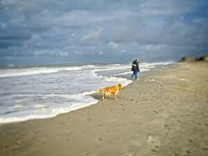 Mit dem Hund nach Dänemark – schönen Urlaub!