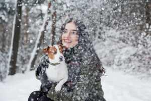 Aktivitäten mit Hund im Winter